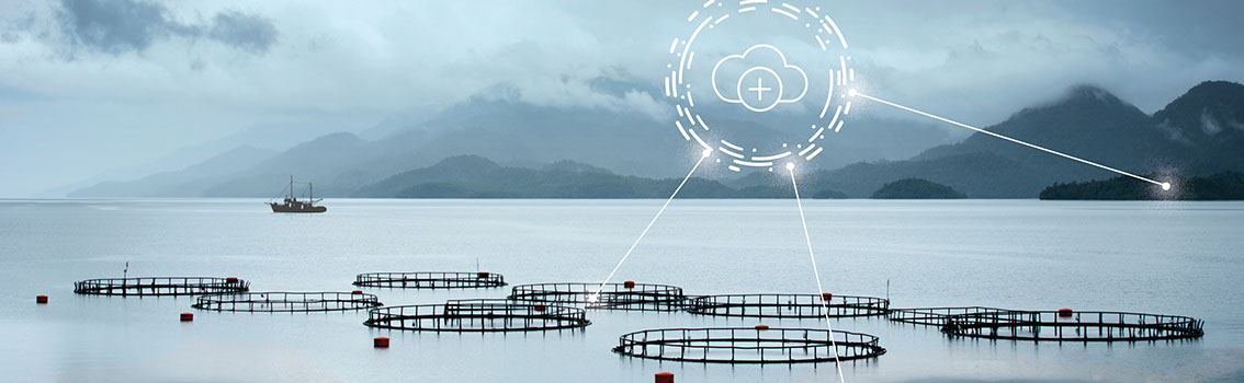 fish farms with data grids