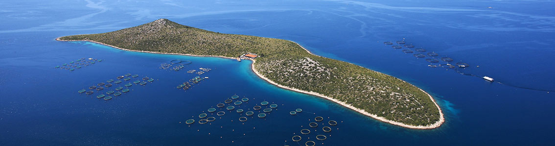 Cromaris first aquaculture farm jointly certified to Friend of the Sea and GLOBALG.A.P.