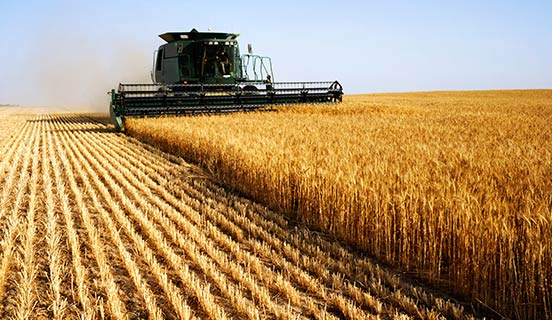 DNV GL - Business Assurance and GFK Eurisko carried out a survey on the management of the Food & Beverage supply chain.