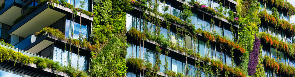 Building with growing greenery